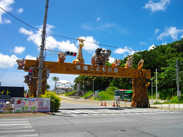 okinawa-zoo-and-museum-in-central-okinawa