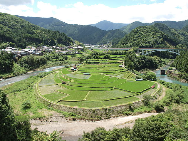 aragi-jima-island-rice-terraces-in-wakayama-city-surroundings